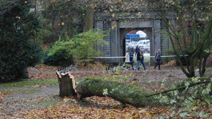 Provinciale domeinen sluiten voor de storm, stad wacht af