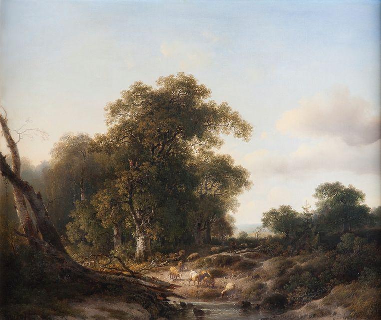J.W. Bilders, 1857: 'Geldersch landschap met schapen bij de Wolfhezer beek en Wodanseiken'. Beeld RV