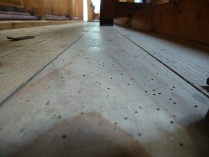 Het resultaat van houtmot: honderden kleine gaatjes