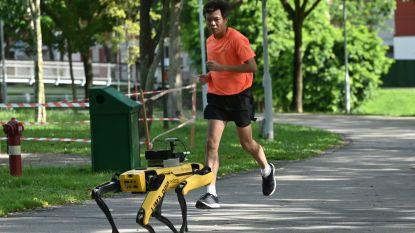 Deze robothond zorgt ervoor dat in Singapore de 'social distancing' wordt gerespecteerd