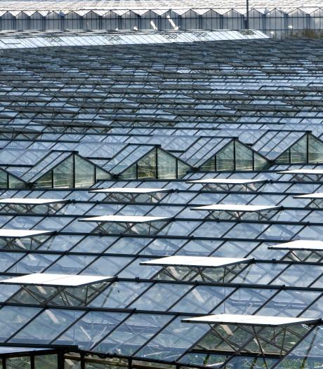 Samen de glastuinbouw naar groener niveau tillen