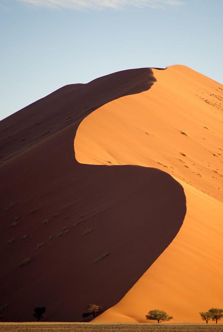 Duin 45, het bekendste duin in de Namibwoestijn. Beeld Govert Schilling
