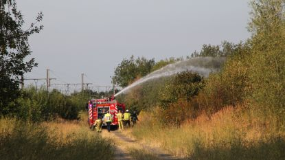 Treinverkeer even stilgelegd door bermbrand in Wevelgem