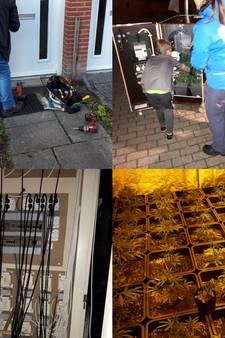 Twee slaapkamers vol hennep in Tilburgse wijk Reeshof