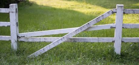 Buitengebied Heesch: schuur die woonbestemming krijgt tegen zere been van buurman