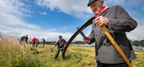 Nostalgie proeven op landelijke maaidag bij Schokland