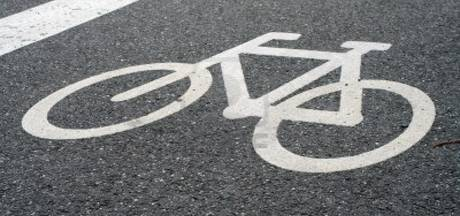 Provincie wil studie naar verlicht fietspad over A15-brug, Loo baalt