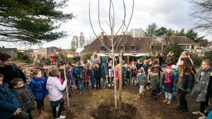Freinetschool Wondere Wereld plant klimaatboom voor Dikketruiendag