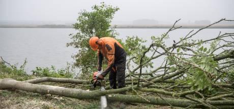 Kleine vierhonderd bomen en struiken ruimen het veld in en rond Terneuzen