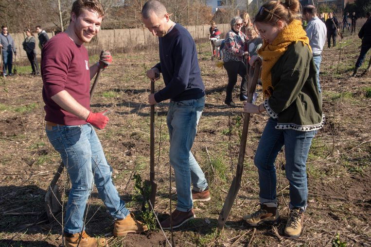 Aanplant Hutsepotbos in Zwijnaarde. Ook de jeugd van Rotaract plant mee. (Christophe Beke)
