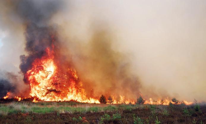 Brandweerlieden zijn op 18 juli bezig met het blussen van een brand op de Leenderheide bij Waalre.