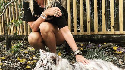 Vrouw van Sergio Herman poseert trots met tijgerwelp, maar dat komt haar duur te staan