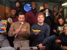 Ed Sheeran covert Shape Of You met kinderinstrumenten