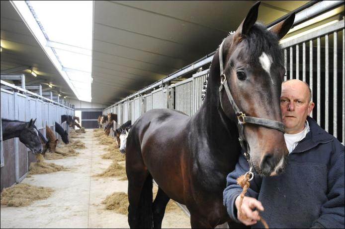 Hans de Roover met hengst Ballack in zijn stal te Strijbeek. foto René Schotanus/het fotoburo
