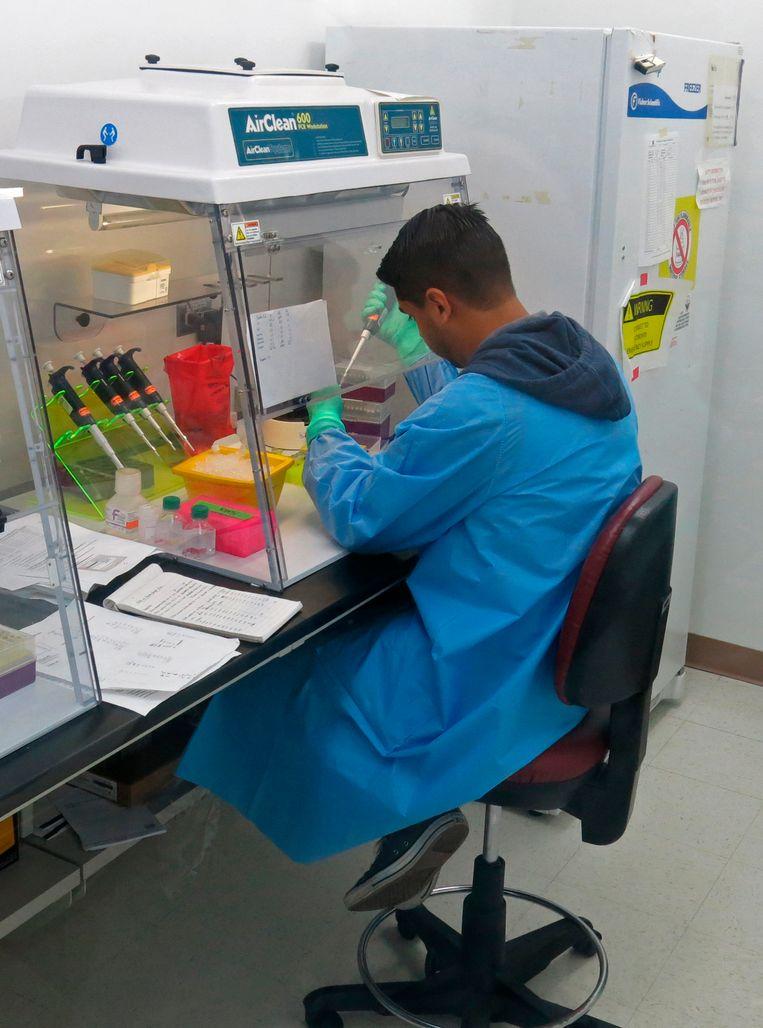 Een medewerker van het Amerikaanse Centers for Disease Control and Prevention (CDC) voert bloedtesten uit in een lab in Puerto Rico. Beeld ap