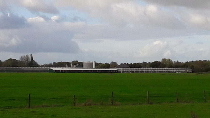 De units bij de aarbeienkas van Gijbert Kreling in Nieuwaal.