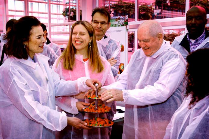 Sonny Perdue, de Amerikaanse minister van Landbouw (r) proeft met collega Carola Schouten (m) en Louise Fresco van de aardbeien uit de klimaatneutrale kas van de Universiteit van Wageningen.