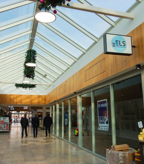 Partijen willen winkelcentrum De Els in Waalwijk nieuw leven inblazen: 'Het is een behoorlijke uitdaging'