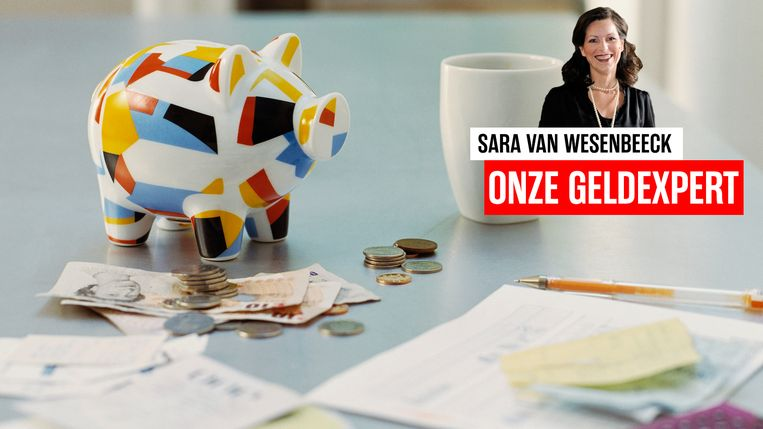 Budgetexpert Sara Van Wesenbeeck maakt deel uit van het geldpanel van Het Laatste Nieuws - www.barkingdogs.be