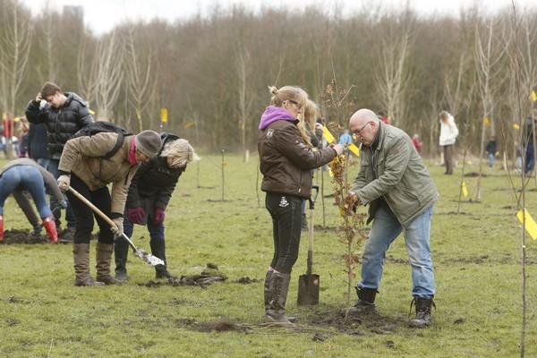Honderden Vlaardingers plantten in 2013 een boom tegen de tunnel.