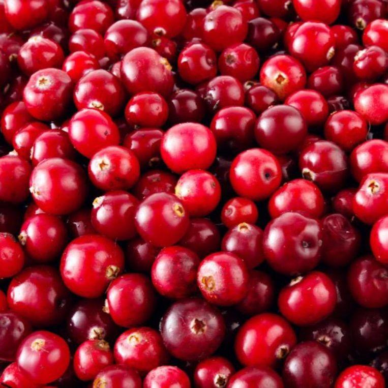 Zeg eens 'Hoi! Cranberry's!' Beeld