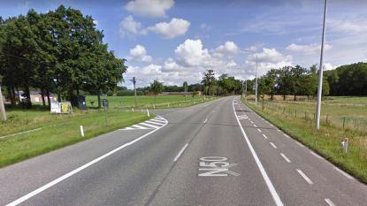 Bushaltes langs Kortrijksestraat in Waardamme worden opnieuw aangelegd