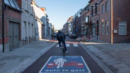 Dorpslijst Sander pleit voor meer fietsstraten