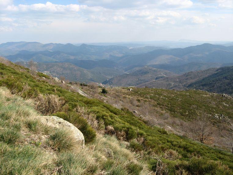 Archieffoto van het bergmassief van Aigoual.