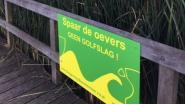 """Toeristische Leie lijdt onder te snelle pleziervaarders: """"Golfslag nefast voor aangemeerde bootjes en oevers"""""""