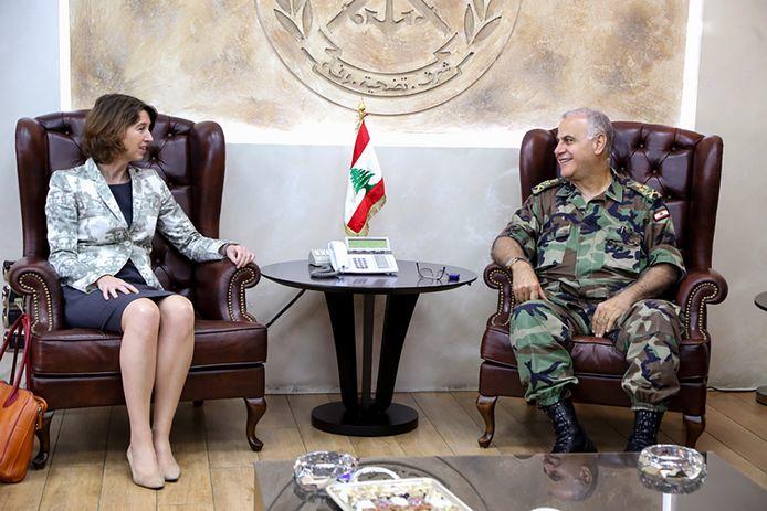 Hester Somsen in haar tijd als ambassadeur in Libanon: bij de Libanese legergeneraal Kahwagi, ontvangst van minister Lilianne Ploumen en minister Bert Koenders.