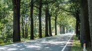 'Dodenbaan' Kinrooiersteenweg eist twee nieuwe slachtoffers: aanrijder legt positieve ademtest af