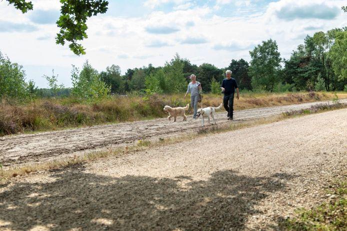 In de Maashorst moeten honden aan de lijn.