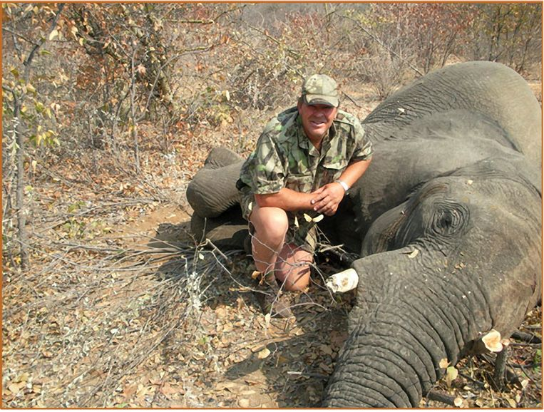Een man poseert met een geschoten olifant.
