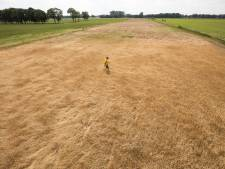 Kabinet steekt extra geld in aanpak extreme droogte