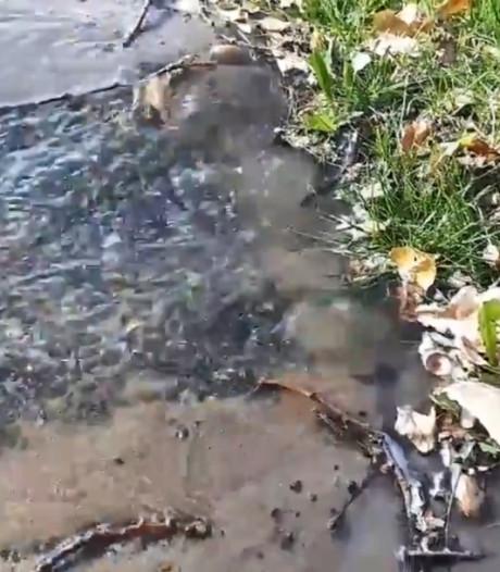 Waterleiding zorgt voor kleine overstroming in Waardenburg: Fietspad afgesloten
