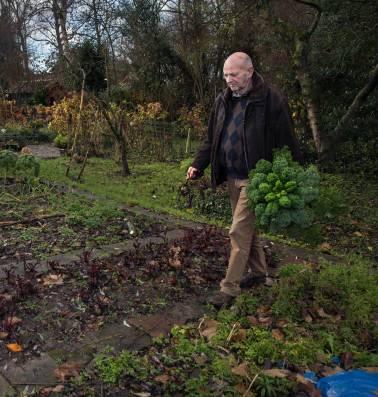 Ted smulde van fruit en groente uit zijn eigen tuin. Lekker gezond. Tot bleek dat er gif in zat