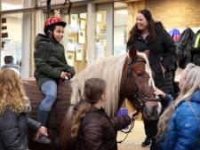 'Charrinjo ontspant op een pony, daar knap ik ook van op'