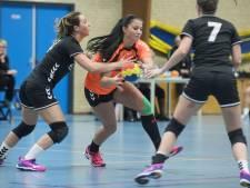 Handbalclubs Zenderen en Bornerbroek bundelen krachten