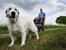 Buren gaat voor afschaffen hondenbelasting, maar niet nu