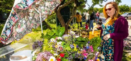 Straatkraam en straks boomgaardterras bij Historische Tuinderij in Lent