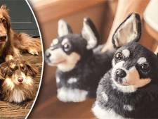 Dit bedrijf maakt pantoffels die exact op je huisdier lijken