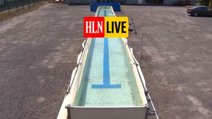 HLN LIVE. Openbare zwembaden toe? Man uit Ieper bouwt er dan zelf maar één