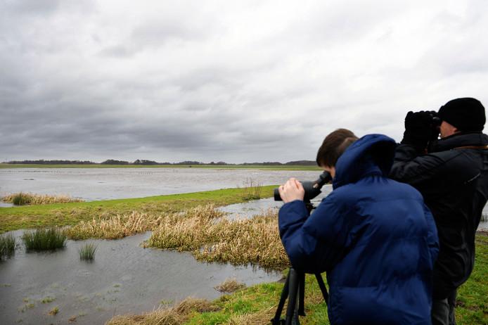 Vogelspotters bekijken trekvogels in het natuurgebied Waverhoek. (Archiefbeeld)
