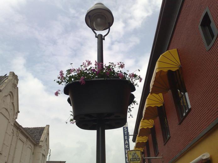 Hangbasket in de Apeldoornse binnenstad.