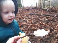 Simen en zoon Teije ontdekken na jaren zoeken zeldzaam natuurverschijnsel: ijshaar