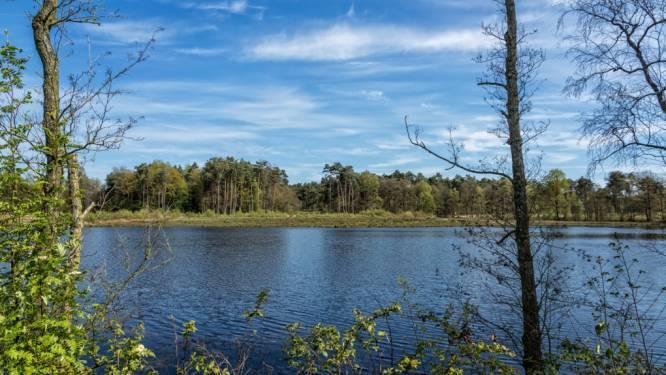 Beschermd stuk van Belse bossen wordt publiek gemaakt na aankoop van Kempens Landschap