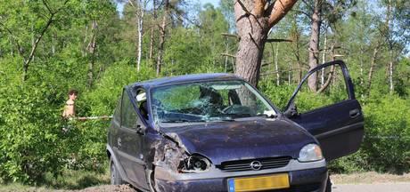 Auto ramt boom in Hoenderloo