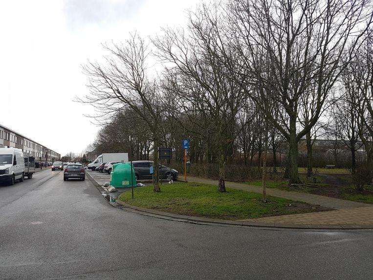In de Populierenlaan in Hoevenen vond een buurtbewoonster vrijdagavond een man in een plas bloed aan. Hij is vermoedelijk het slachtoffer van een carjacking.