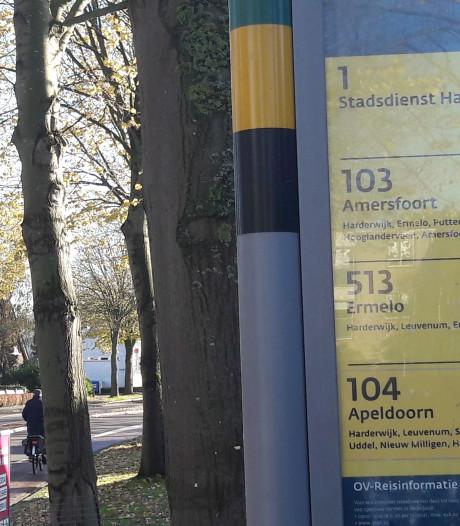 Afwachten of de bus nog komt in Harderwijk in 2020