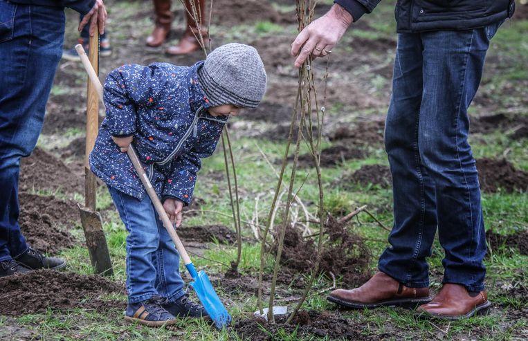 Ook dit jaar worden weer nieuwe geboortebossen in Ieper en de deelgemeenten aangeplant.